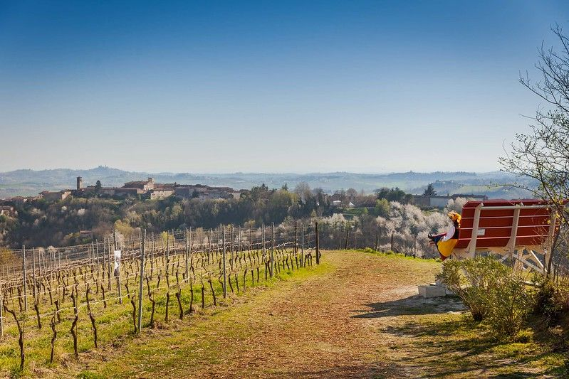 Rosignano Monferrato big bench